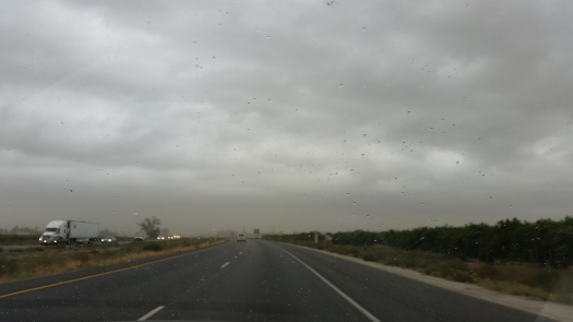 Rain, rain and more Rain