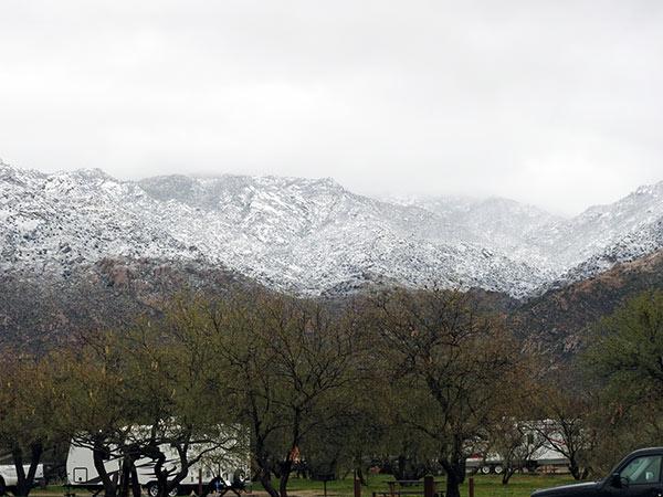 Snow2-7-Jan
